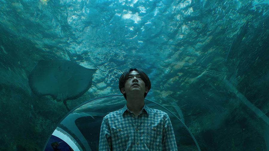 CineFest 2016 - Értékelés: Törés (Sa-nap / Snap)