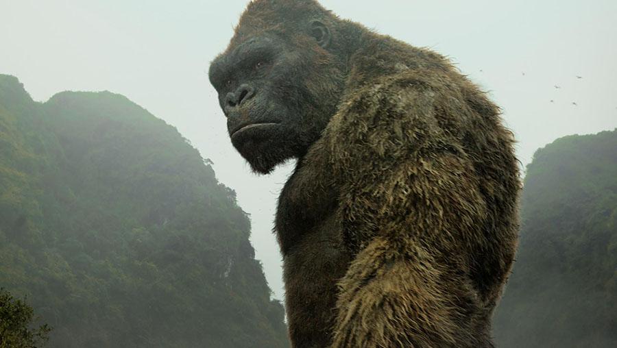 Értékelés: Kong: Koponya-sziget (Kong: Skull Island)